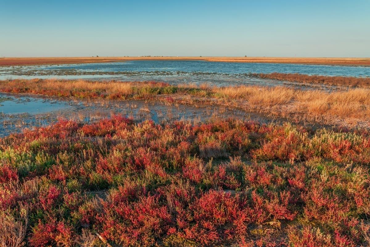 Бакальское озеро 2
