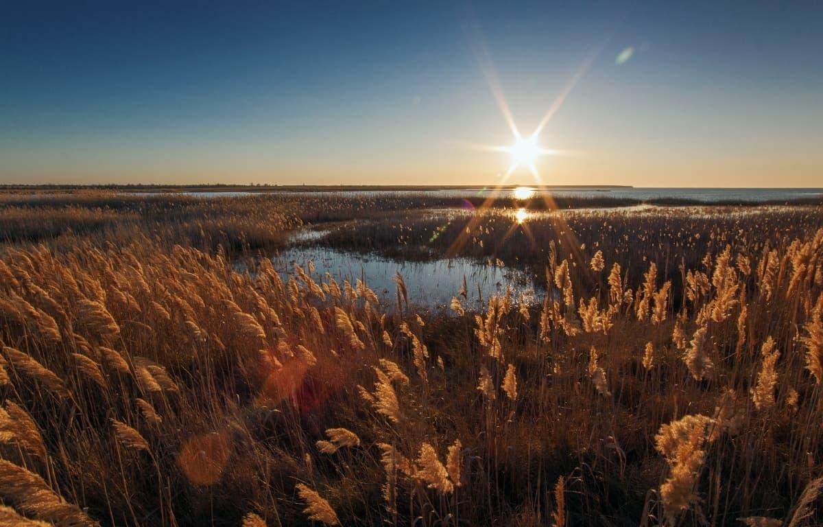 Бакальское озеро 4