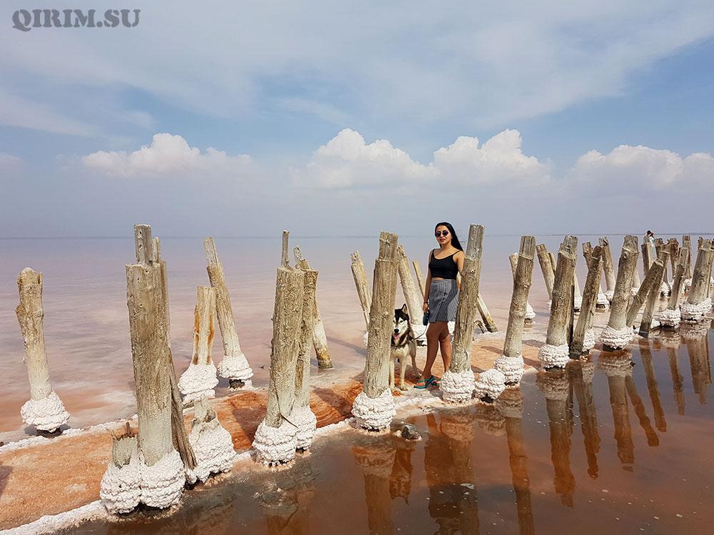 Розовое озеро Сасык Сиваш