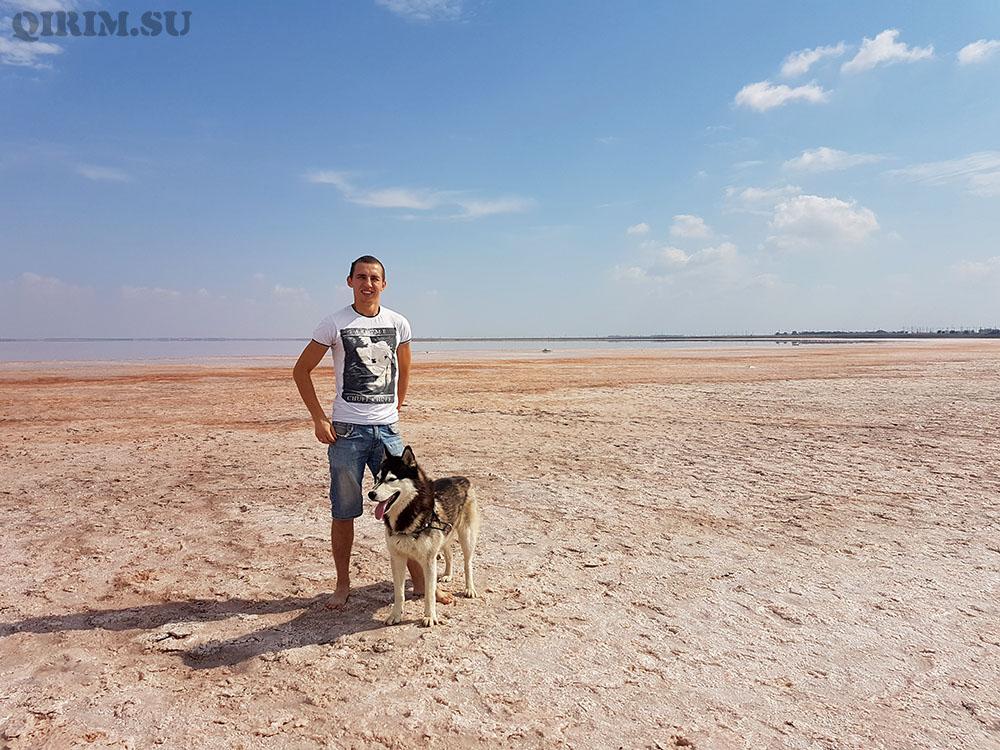 Розовое озеро в Крыму где находится