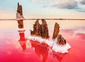 Розовые озера Крыма