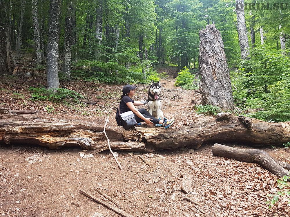 Ангарский перевал летом