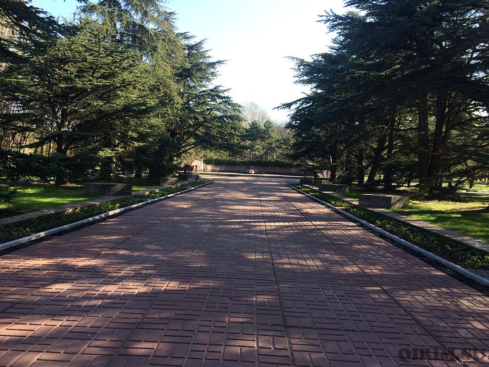 Гагаринский парк вечный огонь