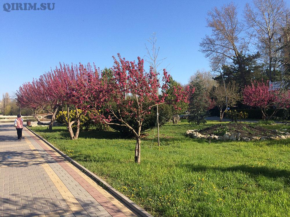Гагаринский парк вход