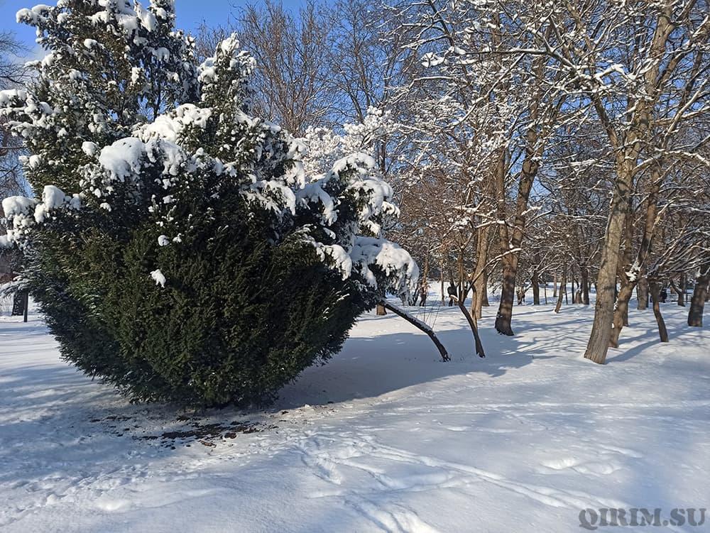 Гагаринский парк зимой