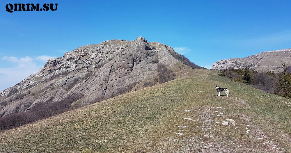 гора Лысый Иван и Северная Демерджи