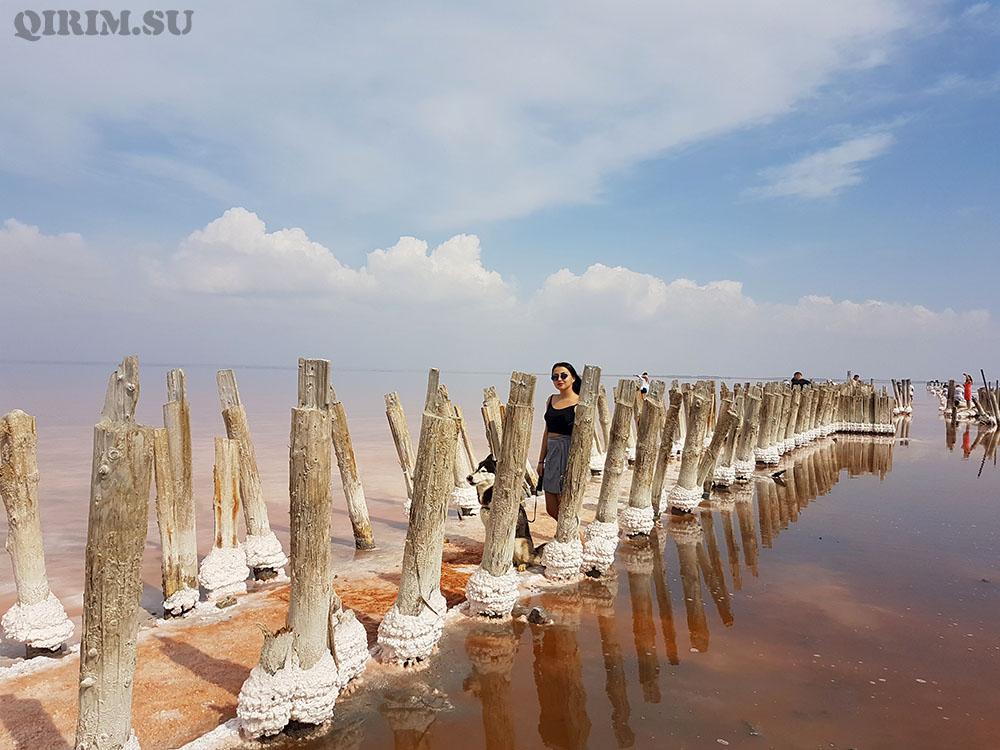 Озеро Сасык Сиваш в Крыму