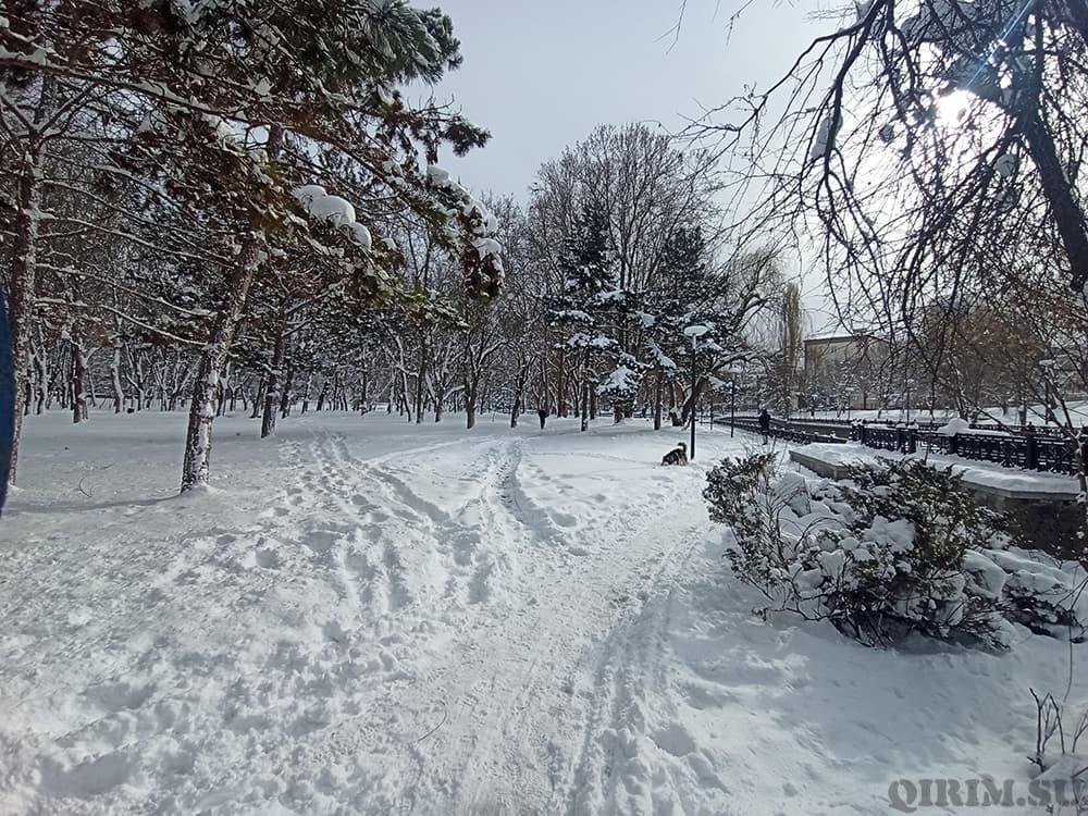 парк имени Гагарина в Симферополе зима