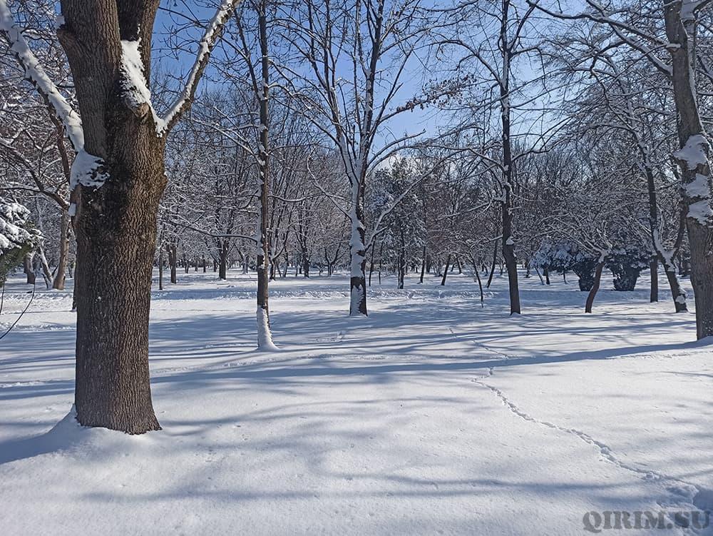 Заснеженный Гагаринский парк