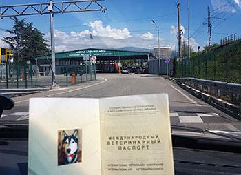 Поездка в Абхазию миниатюра