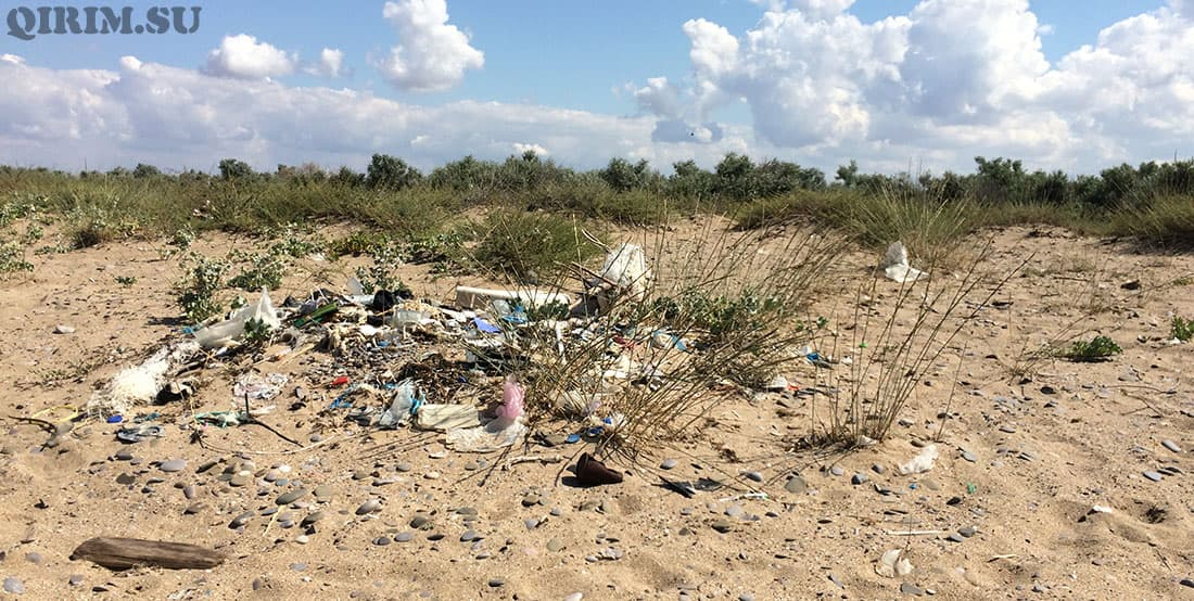 Новофедоровка кучи мусора на пляже на дикарях