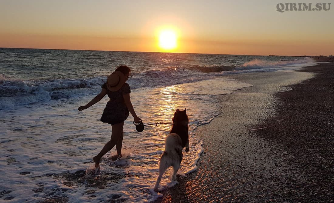 Новофедоровка море и закат