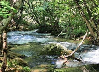 Река Черная миниатюра