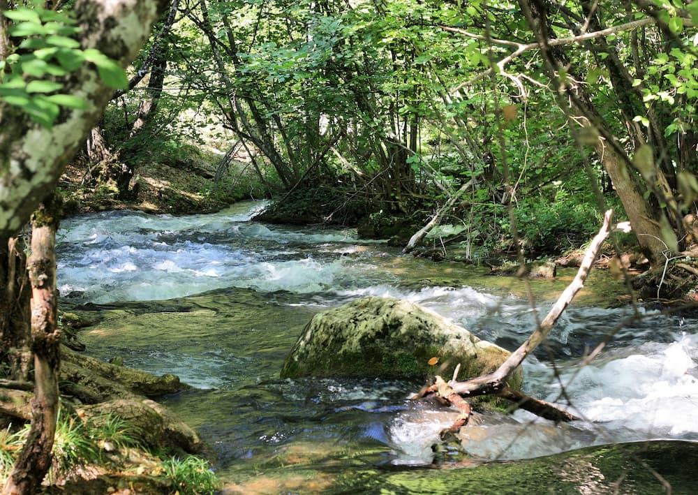 Река Черная пикник