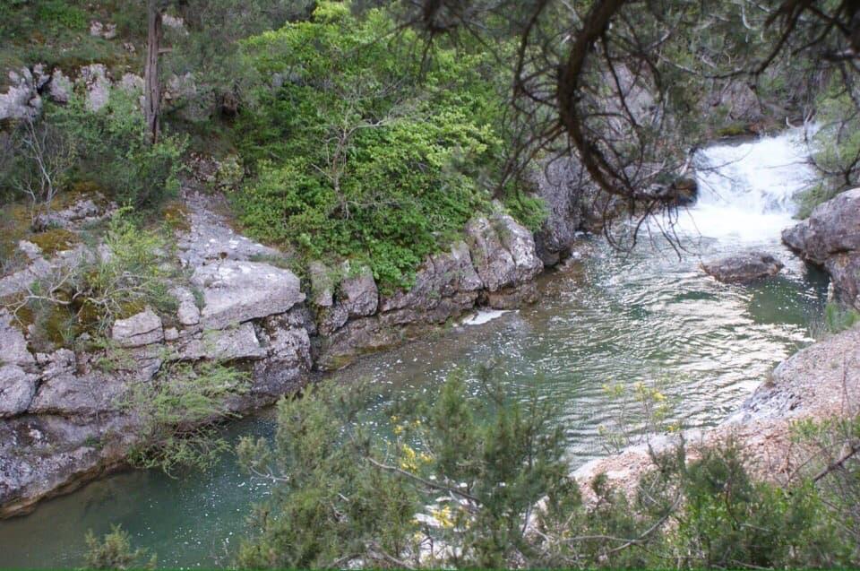 Река Черная природа