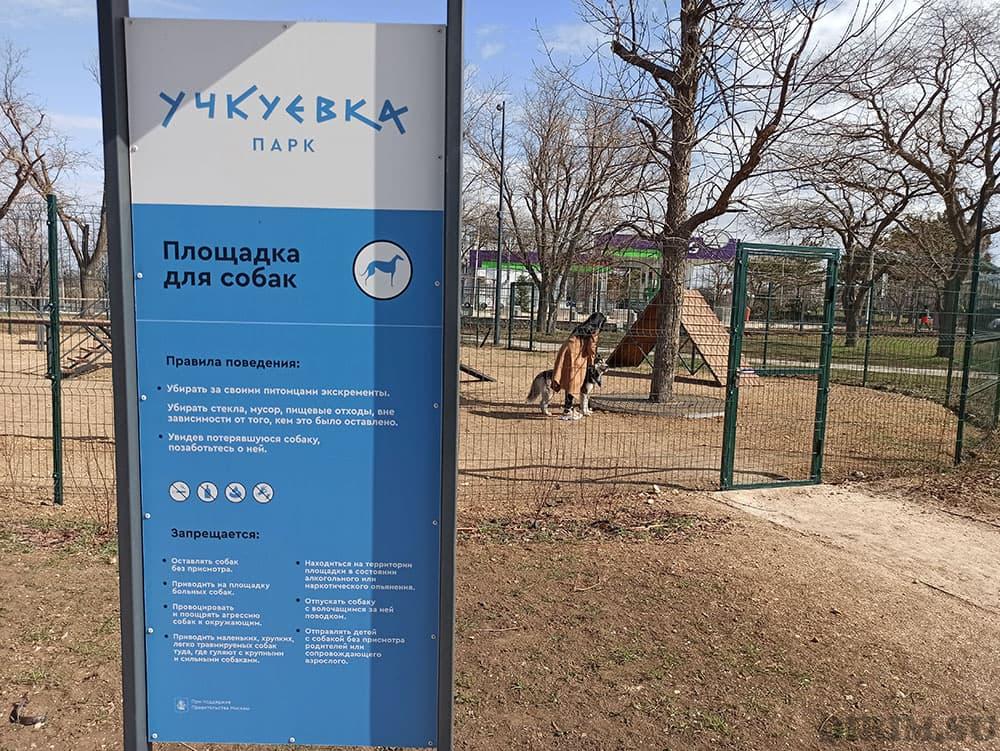 Парк Учкуевка площака для собак
