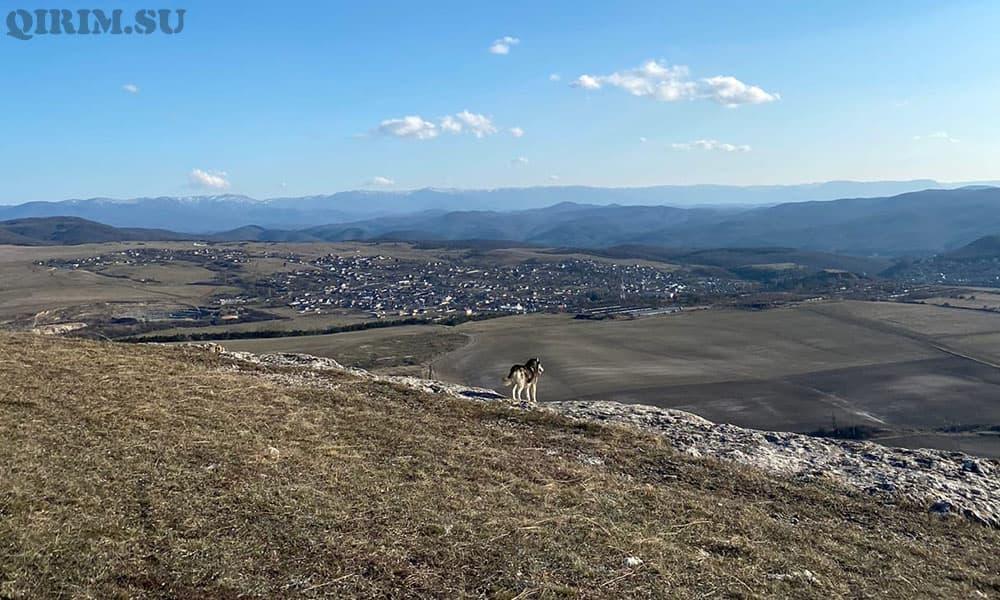 Таш-Джарган Симферополь
