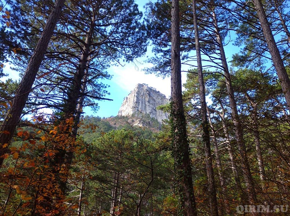 Боткинская тропа вид на гору