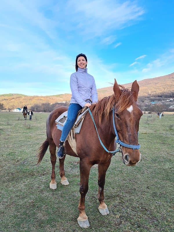 Соколиное Лошади
