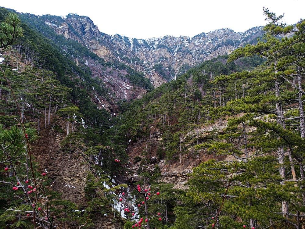 Штангеевская тропа зима и горы