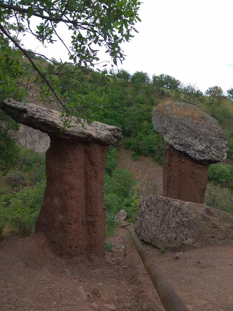 каменные грибы Сотера Малореченское 2
