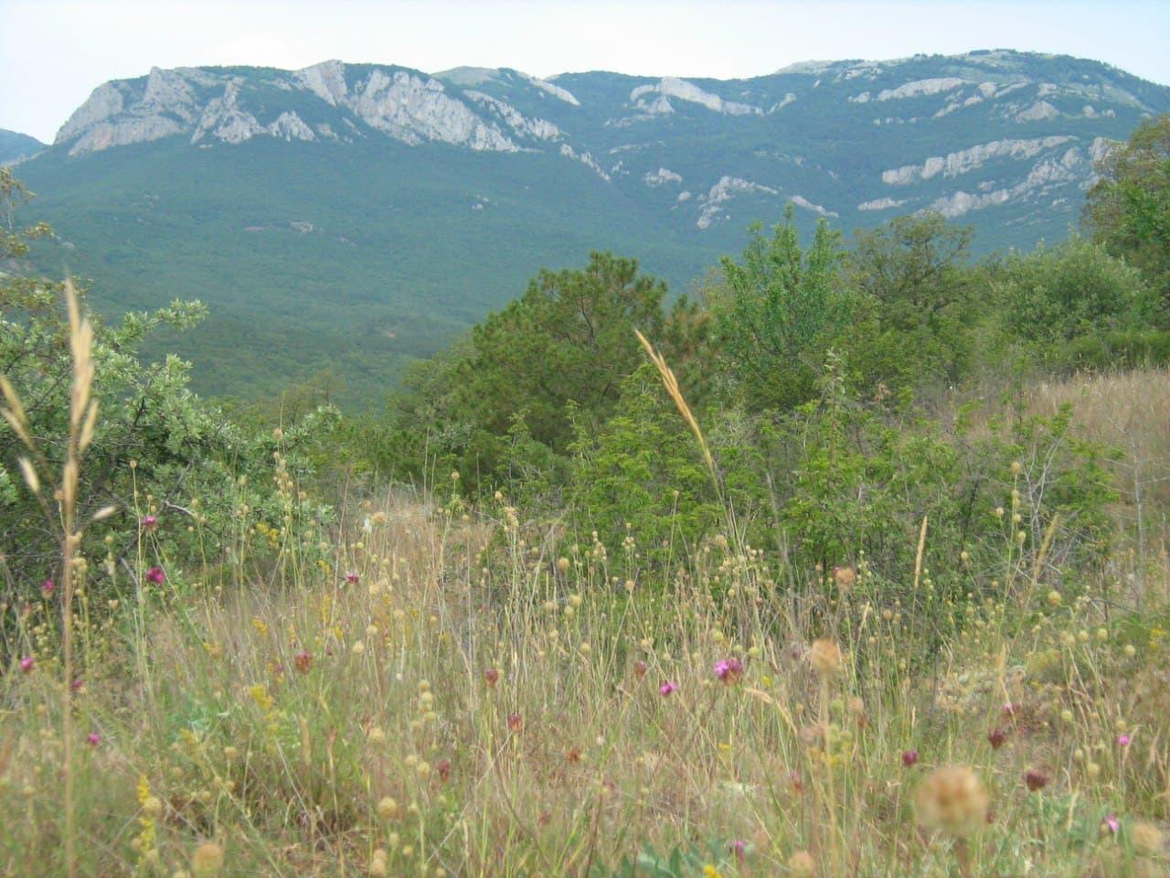 Малореченское горы за поселком