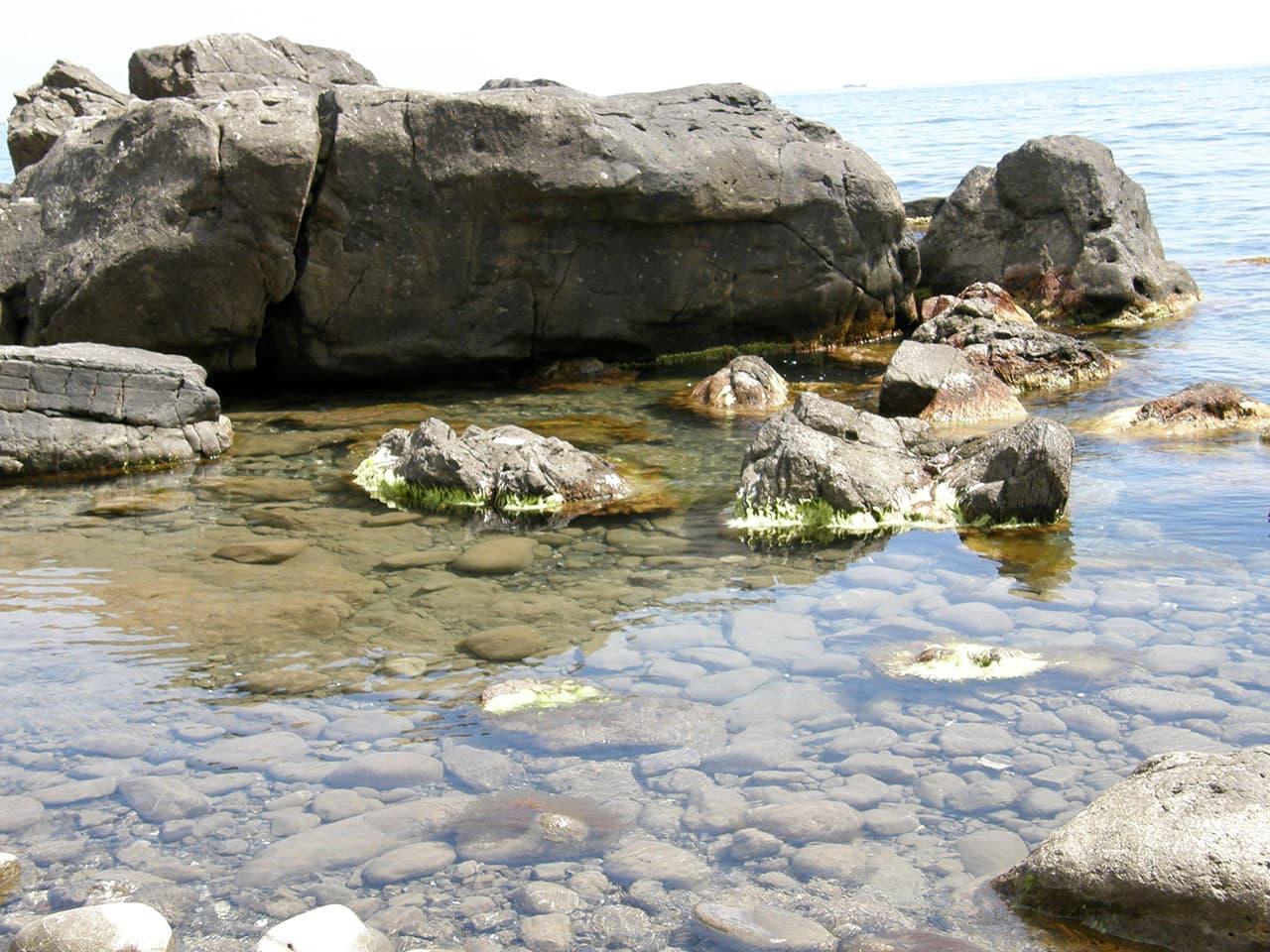 Малореченское море на диком пляже