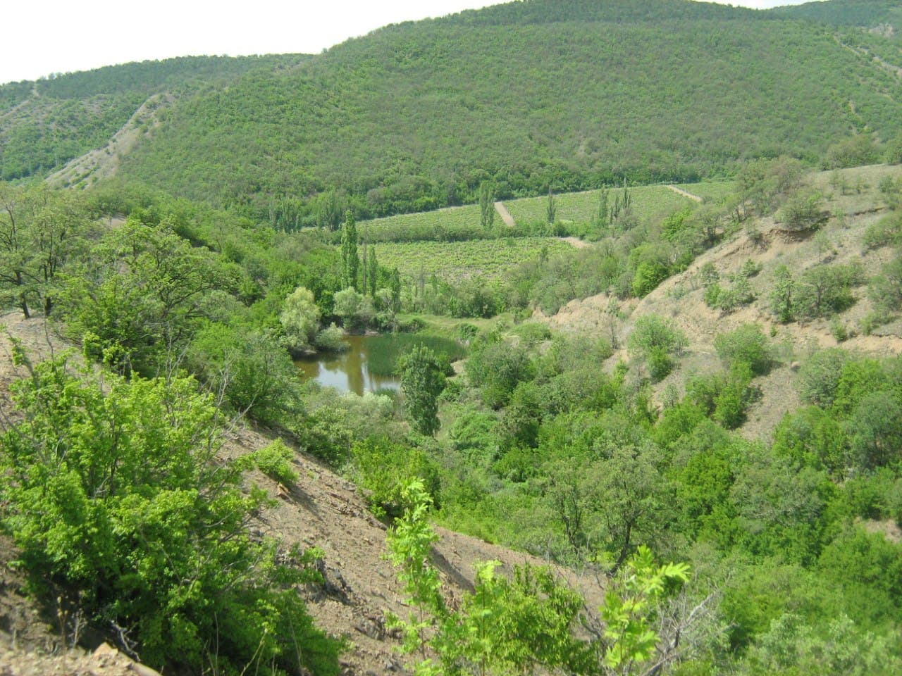 Малореченское поход в горы