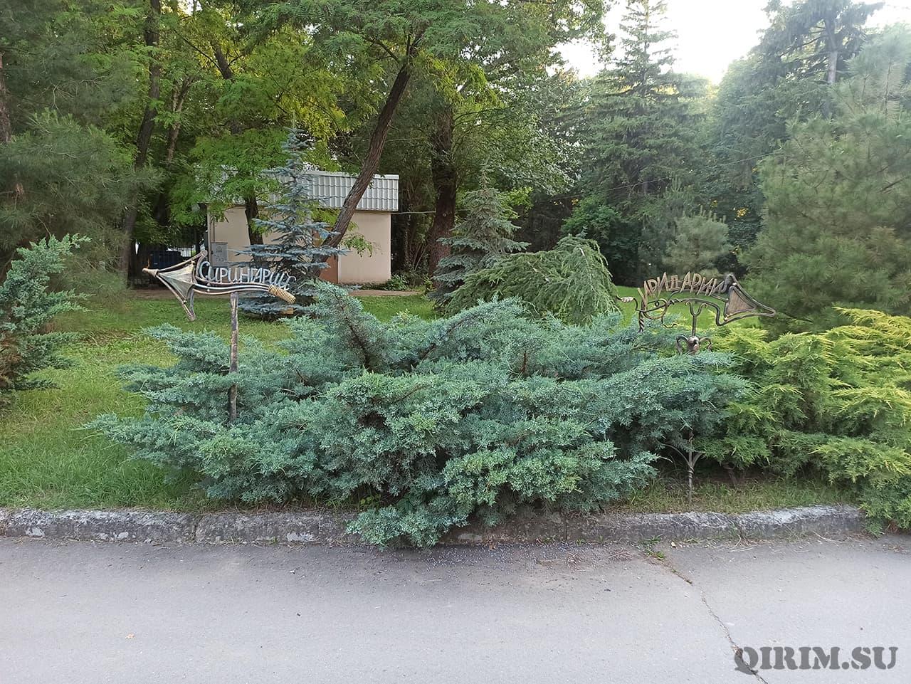 Ботанический сад направления на Сирингарисс и Иридарий