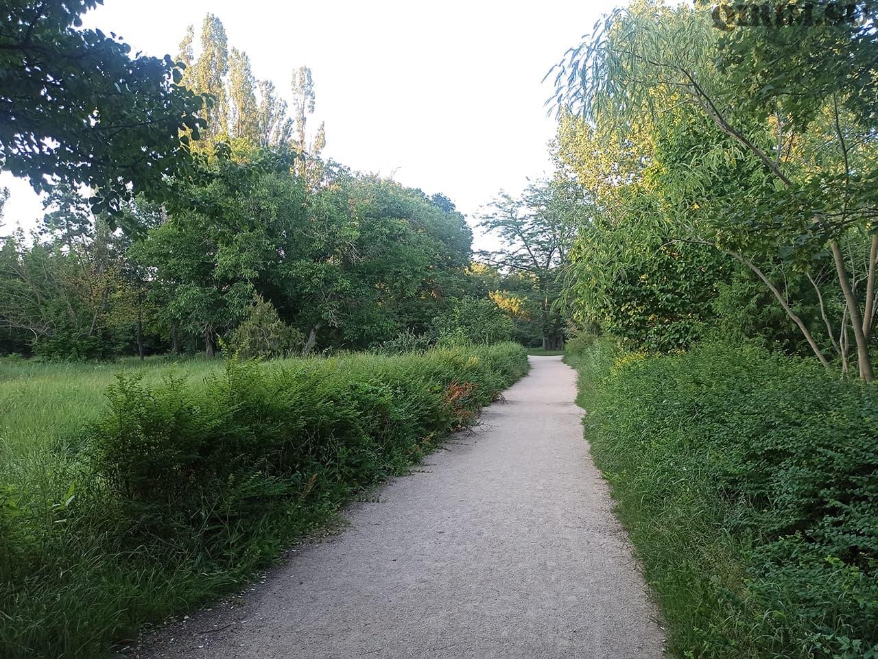 Ботанический сад ТНУ Вернадского