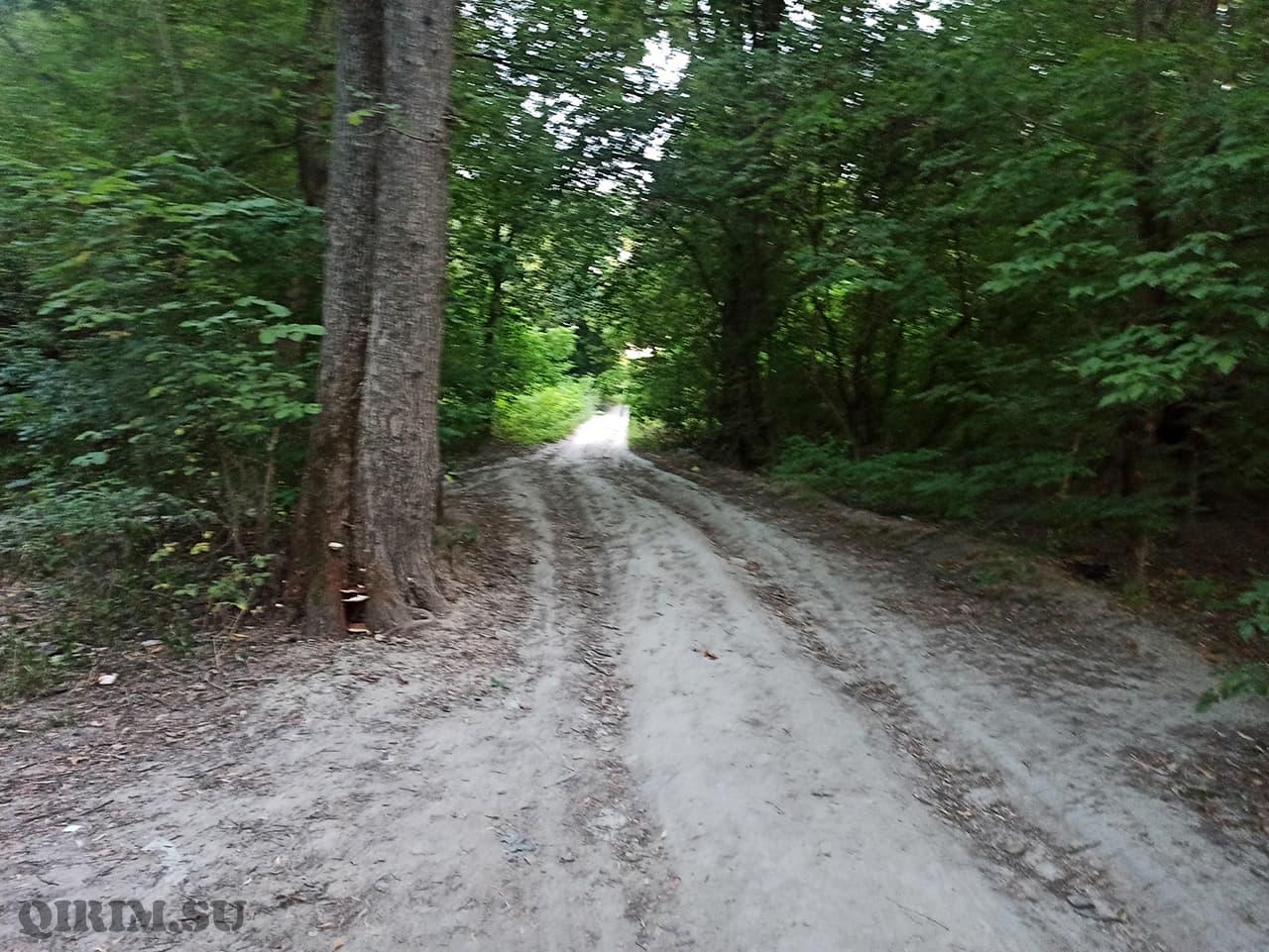 Дорога вдоль озера от гренажного переулка в сторону радиорынка