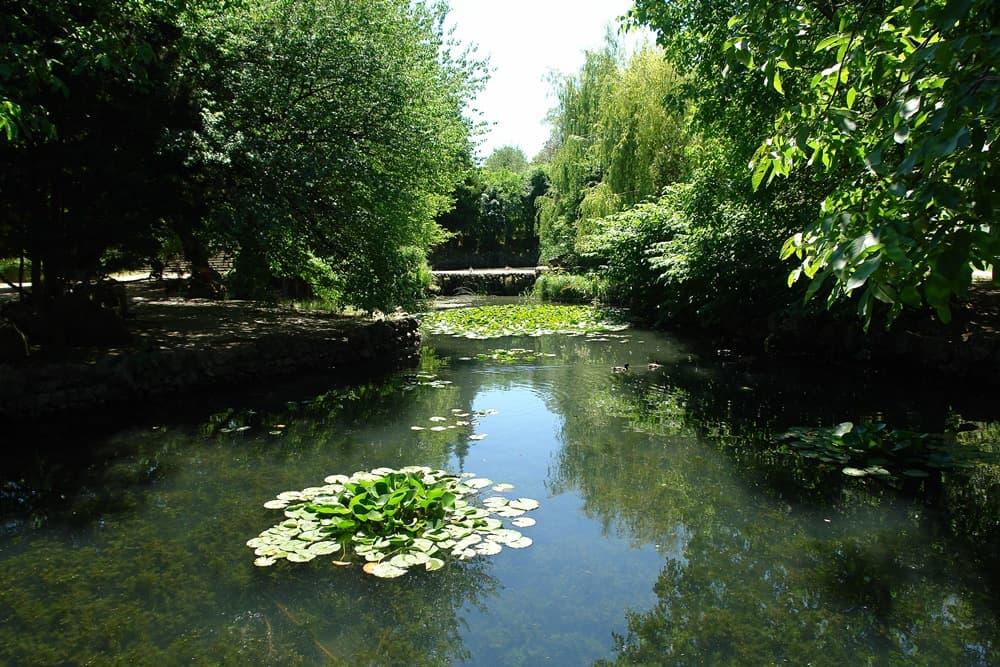 Каскад прудов в Ботаническом саду в Симферополе