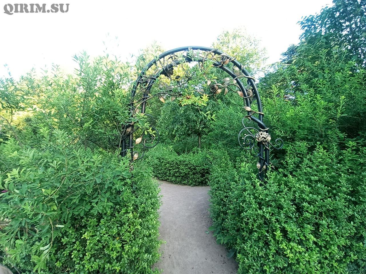 Лабиринт Ботанический сад в Симферополе 1