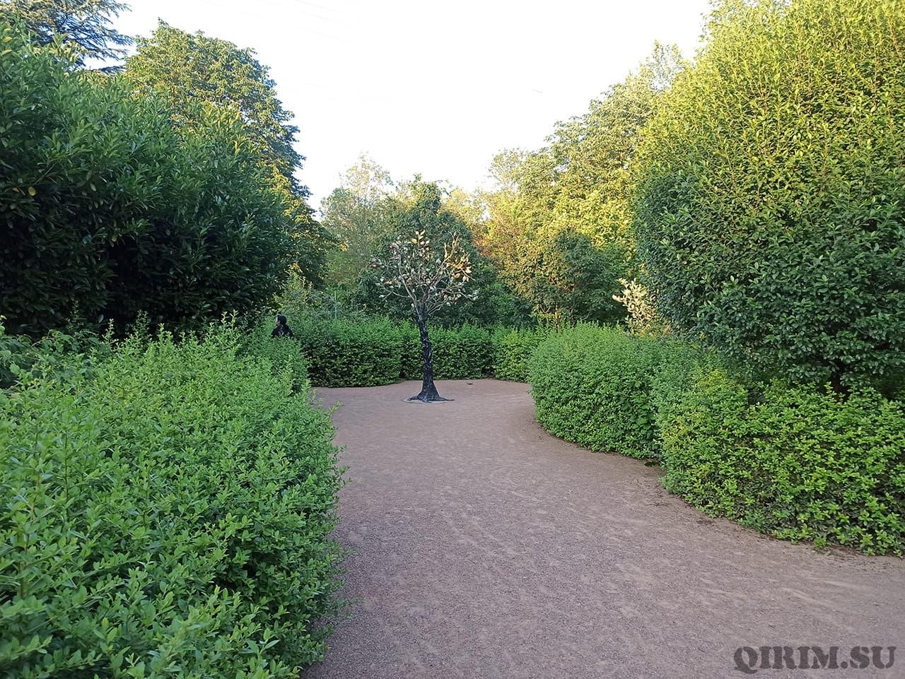 Лабиринт Ботанический сад в Симферополе 2