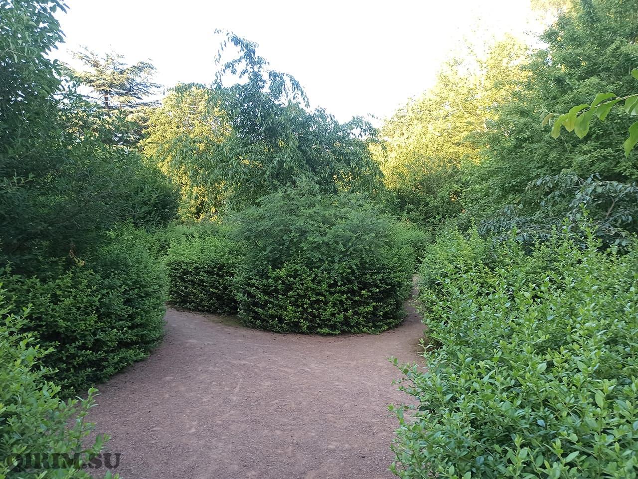 Лабиринт Ботанический сад в Симферополе 4