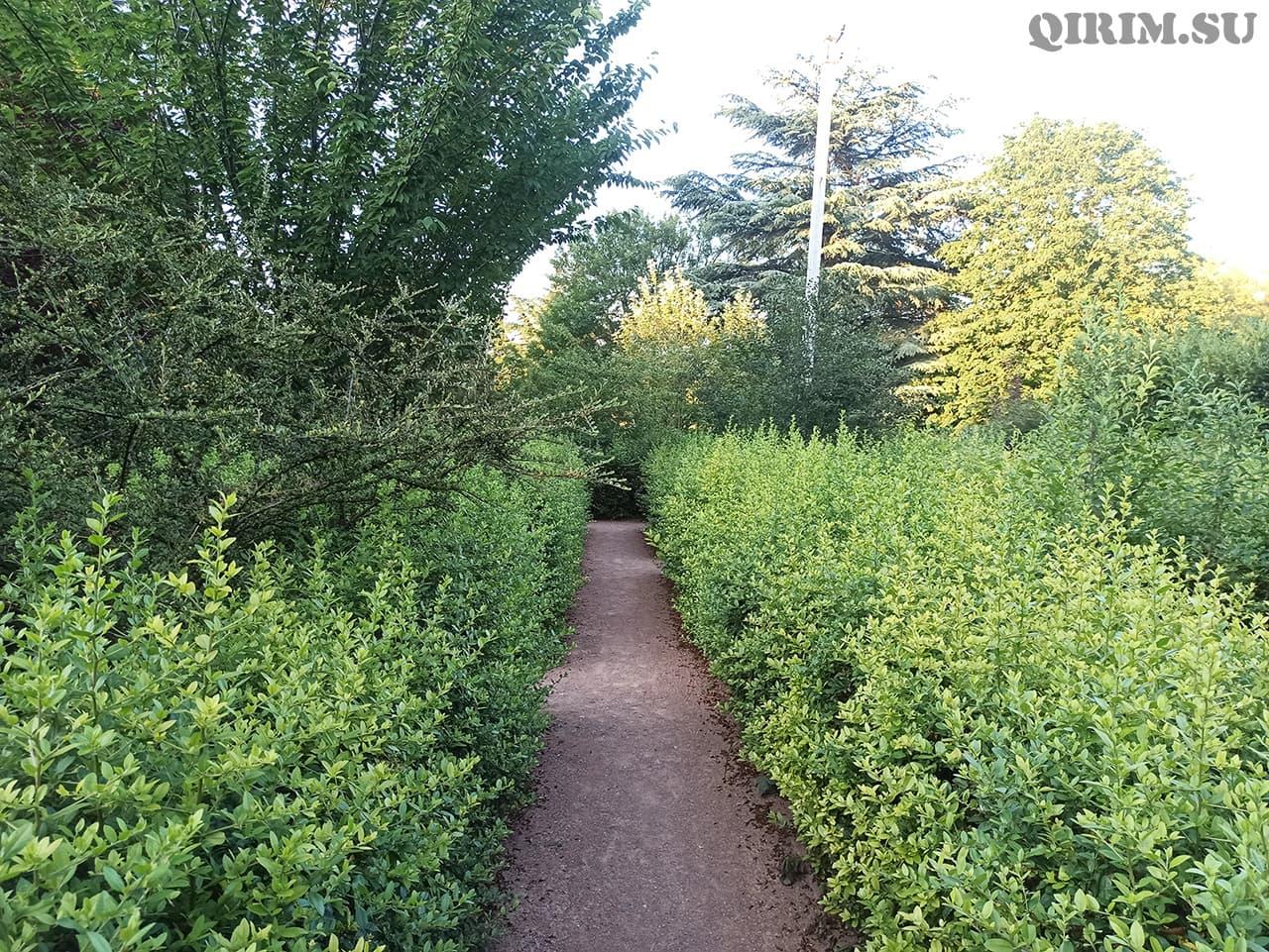 Лабиринт Ботанический сад в Симферополе 5
