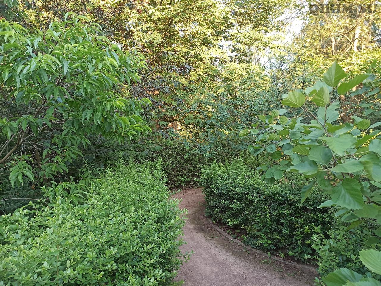 Лабиринт Ботанический сад в Симферополе 6
