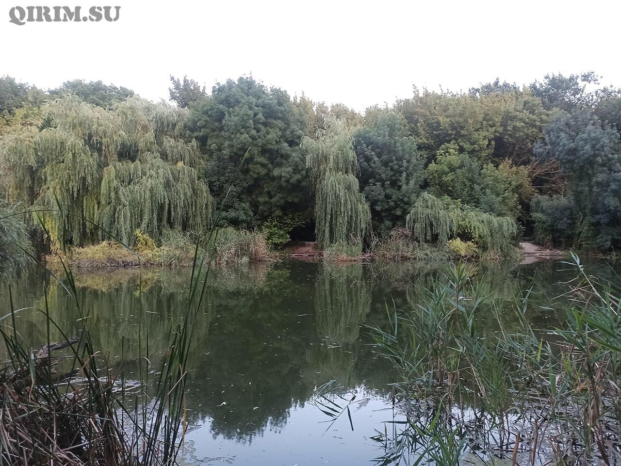 Нижний пруд в отдаленности от Радиорынка в Симферополе