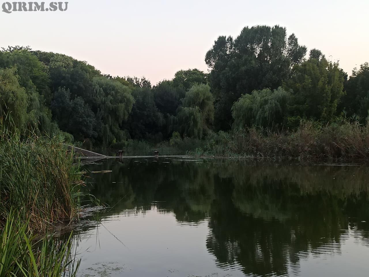 Озеро в районе радиорынка обратная сторона