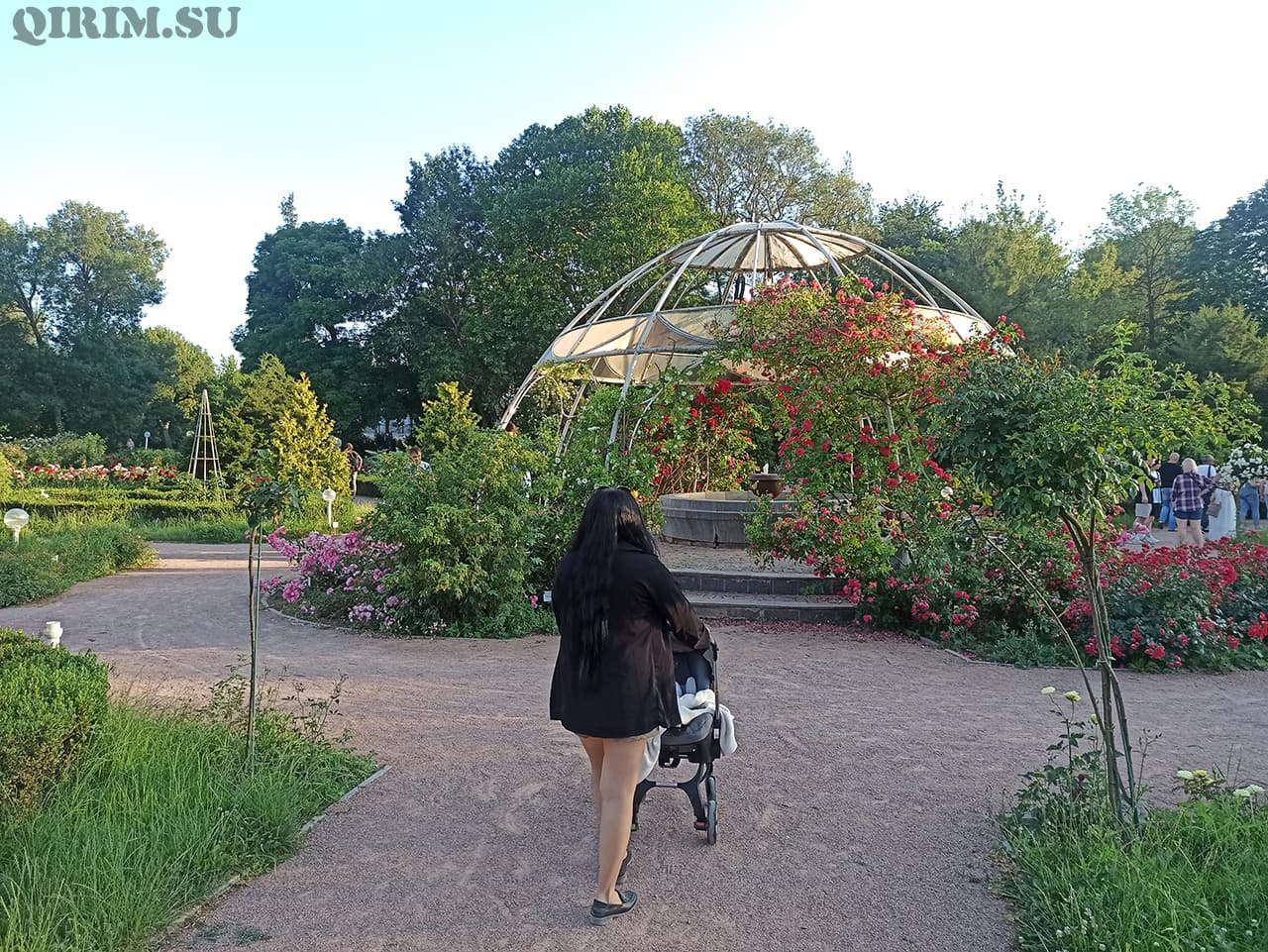 Розарий в Ботаническом саду в Симферополе 1